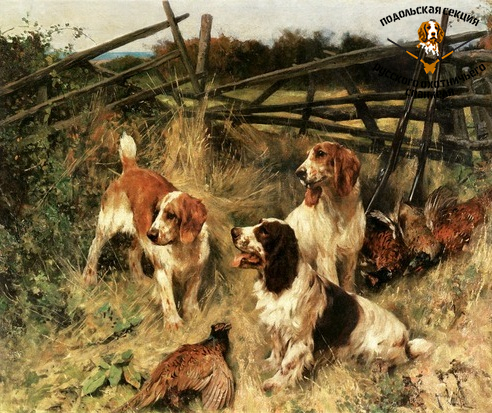 arthur-wardle-springer-spaniels-good-day-in-the-field.png